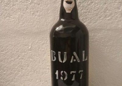 Bual 1977