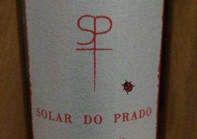 SOLAR DO PRADO 2009 (2)