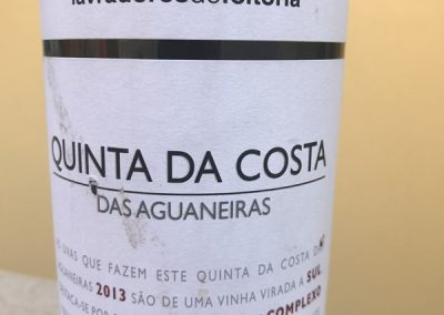 Quinta da Costa 2013_2