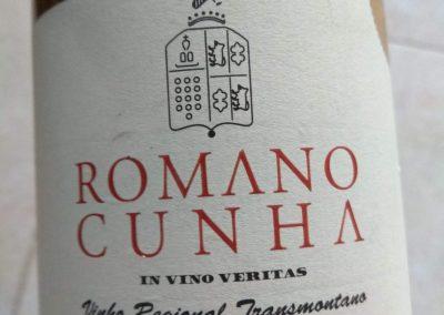 Romano Cunha 2010