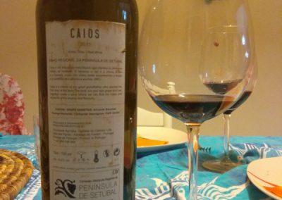Caios 2011 2