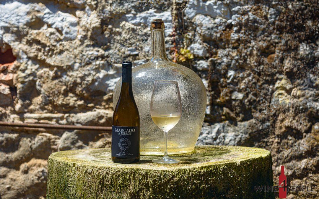 Visita à adega Pimentel Wines